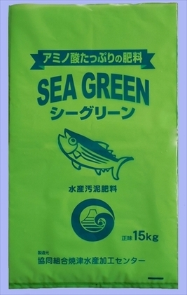 seagreen.jpg