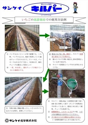 160322キルパーいちご高設栽培ちらし_ページ_1.jpg