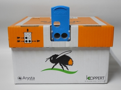 Bee Home System1.JPG