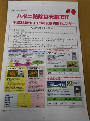 DSCN3175_R.JPG