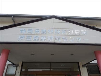 DSCN3246_R.JPG