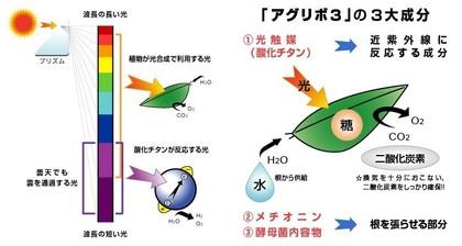 ag3_mechanism.jpg