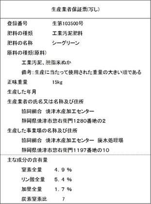 seagreen_4.jpg